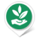 WELLBEING • Naturopaths & Acupuncture